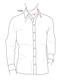 Shirt Measurement - Neck